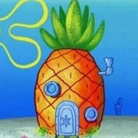 你以为你以为的菠萝就是你以为的凤梨么