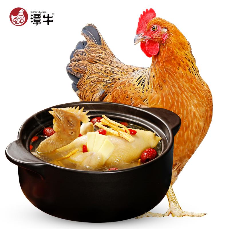 潭牛 海南文昌鸡 散养110天 母鸡2只(净重3.6斤)
