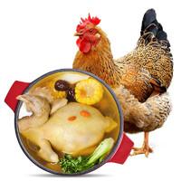 WENS 温氏 供港老母鸡 1.4kg