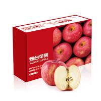 京觅 红富士苹果 12个 2.1kg 单果160-190g