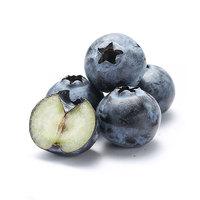 京觅 智利蓝莓 125g*12盒