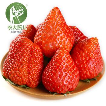 京东PLUS会员 : 农大腕儿 丹东99草莓  净重2.8斤(35-40个果)大果