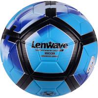 蘭威正品膠粘彩色足球耐磨5號五訓練比賽用青少年足球