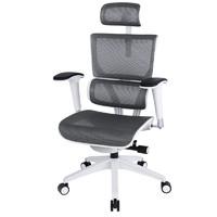 Ergoup 有譜 WV 人體工學電腦椅