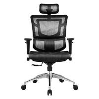 SITZONE DS-001 人體工學電腦椅 A1黑色標準版