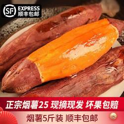 烟薯25  蜜薯甜蜜红薯地瓜5斤装