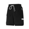 PUMA 彪马 STANDBY SHORTS 男子运动短裤 530328