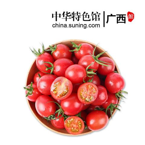 广西馆 圣女果新鲜樱桃小番茄5斤千禧果当季水果西红柿孕妇水果 华南