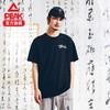 PEAK 匹克 水墨系列洒脱 DF602057 男士圆领T恤
