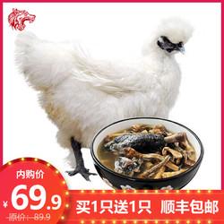 芮瑞 白凤乌鸡土鸡乌骨鸡新鲜鸡肉 月子鸡整鸡整只 杀后净重 700g