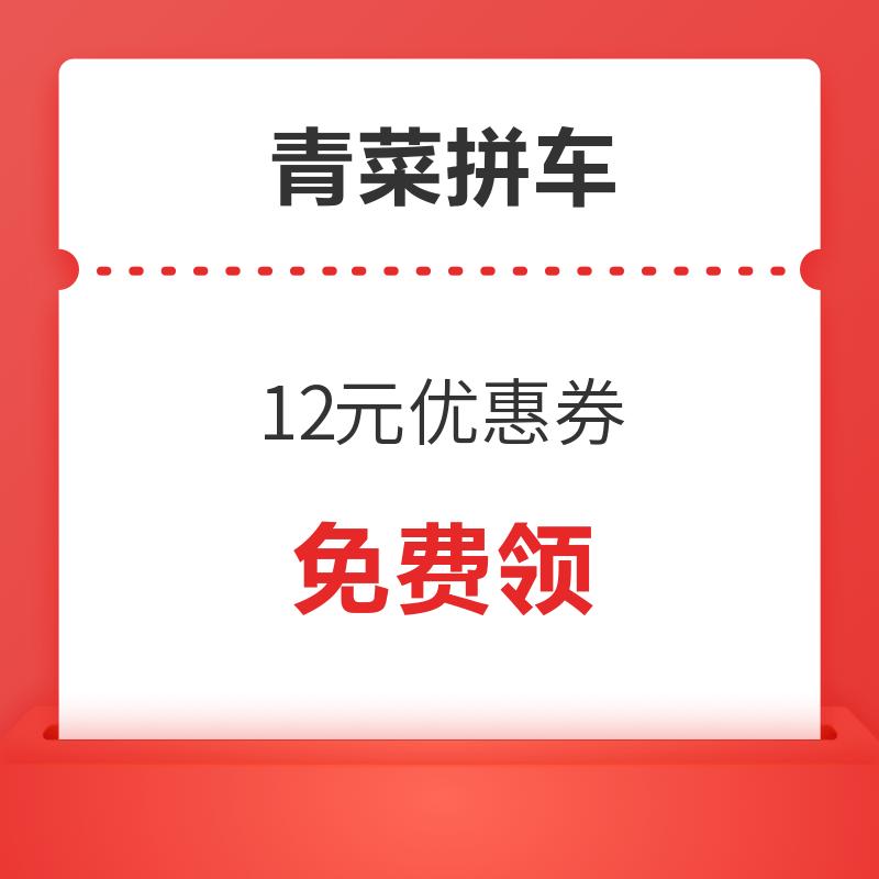 滴滴青菜拼车12元优惠券