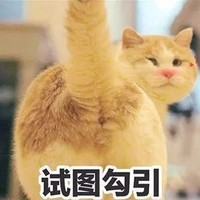 3月6日补贴白菜看这里,汇聚全平台白菜好价~