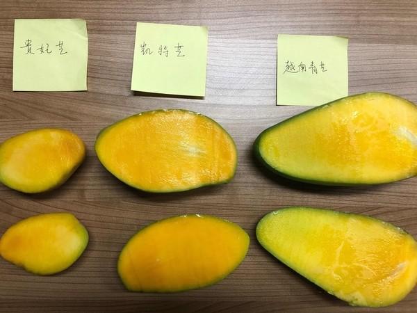 芒果大比拼,各类芒果究竟哪款更好吃?