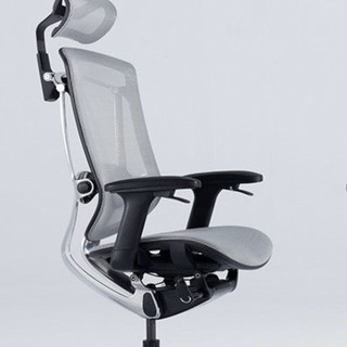 Ergoup 有谱 人体工学椅