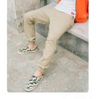 京东PLUS会员:Dickies DK008164 男士罗纹收脚休闲裤 *3件