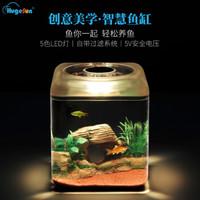 HugeSun  亚克力 鱼缸水族箱 安全低电压5V