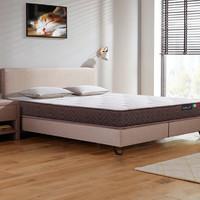 CatzZ 瞌睡猫 经典款 3E椰棕护脊床垫床垫 180*200*22cm
