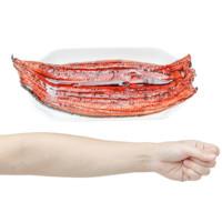 PLUS会员:瀚通  蒲烧鳗鱼  400g
