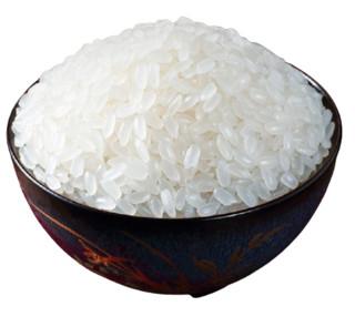 十月稻田 东北长粒香米 5kg