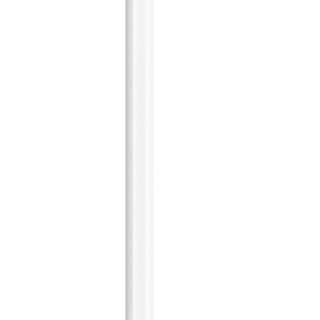 Apple 苹果 MU8F2CH/A 2020款 触控笔