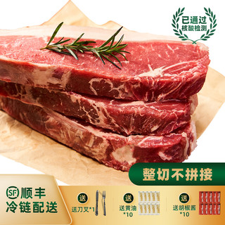 京东PLUS会员 : 伊比夫 原切西冷整切静腌牛排套餐8-10片1000g