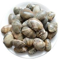 賣魚郎 蛤蜊 1.5kg