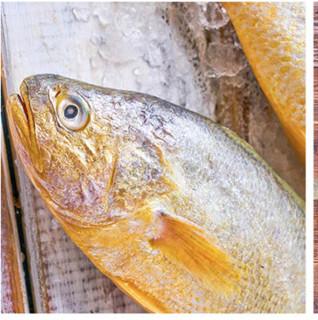 GUOLIAN 国联 黄花鱼