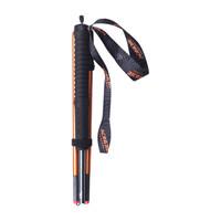 AONIJIE 奥尼捷 E4102 登山杖 DS-006 灰金 110cm 小号两根装