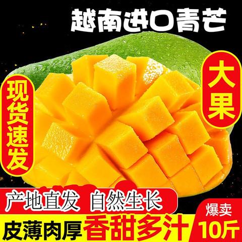 界梁山 越南进口当季特大青芒果 玉甜心芒 大果 10斤