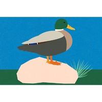 【pica photo】Rosi Feist 作品 《给宝拉的鸭子》三种尺寸 艺术微喷