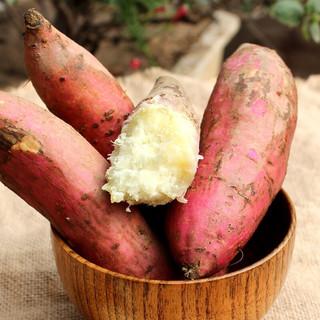 商薯红薯 白心红薯 板栗红薯 农家地瓜 新鲜蔬菜 2500g中大果
