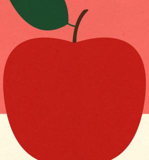 【pica photo】Rosi Feist 作品《红苹果》33*28 哑光纤维艺术纸