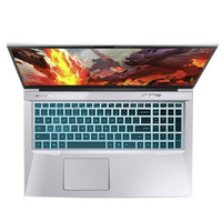 百亿补贴:MECHREVO 机械革命 深海泰坦X8 Pro 17.3英寸笔记本电脑(i7-10870H、16GB、512GB、 RTX3060)