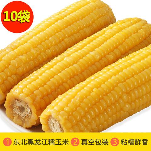 振豫 [灵宝助农馆] 东北糯玉米棒黏玉米 新鲜真空包装 10根