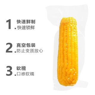 振豫 东北糯玉米棒黏玉米 非转基因黄苞米粗粮早餐 香软糯新鲜真空包装 200g糯玉米*10根