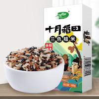 十月稻田 三色糙米饭 480g
