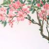 【朵云轩木版水印】吴昌硕 桃花 中国画装饰画 收藏 画芯 32*27cm 纸本