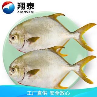 翔泰 国产海南二去金鲳鱼700g(2条)去鳃去内脏 无公害认证 全程可追溯 鱼类 生鲜 海鲜水产