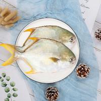 XIANGTAI 翔泰 国产海南金鲳鱼 500g