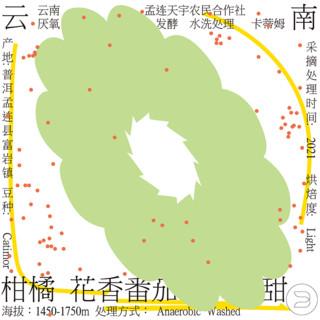 治光师/2021云南去产地系列孟连/天皓百里挑一精品咖啡豆150g