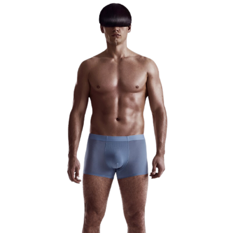 DAPU 大朴  AF5N02103 男士冰丝网孔透气内裤