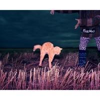 【pica photo】BENOIT PAILLE 拥抱日 30 x 33 cm装饰画  收藏级影像工艺