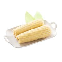 淘缘明  新鲜东北甜糯玉米粘牙黏白玉米10支装真空包装