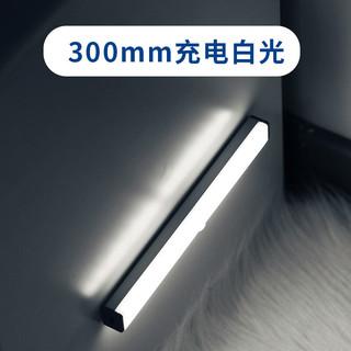 QIFAN 启梵 橱柜长条人体感应灯带led灯条衣柜智能   30cm充电白光  感应