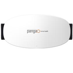 pangao 攀高 PG-2643 腰部按摩仪