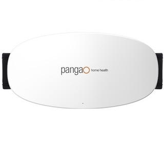 pangao 攀高  PG-2643 腰部按摩器