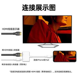 Apple 闪电影音转换器 Lightning AV Adapter