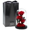 JoyFlower 玻璃罩玫瑰永生花