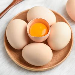 小马乐活 农家土鸡蛋 20枚装