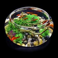 喜莱卡 小号水晶圆缸【鱼缸+鹅卵石+仿真铜钱草】